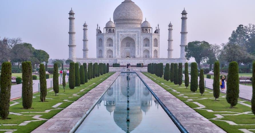 Les meilleurs chiens d'Europe se tournent vers le marché indien des casinos en ligne en forte croissance