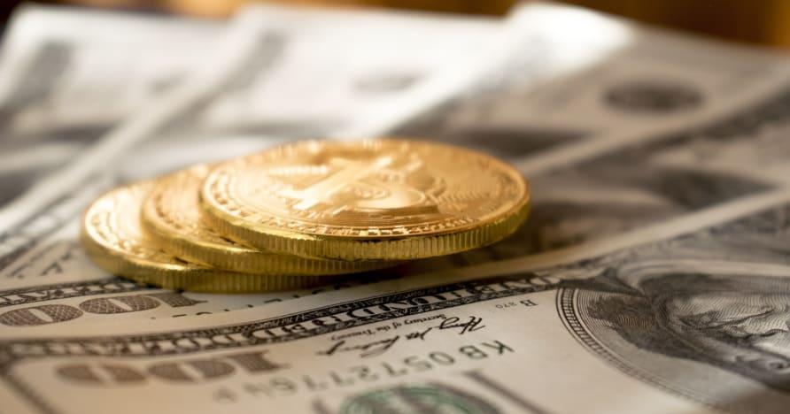 Critique du casino Mummy's Gold