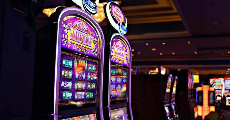 Ce que vous devez savoir sur Play'n Go Money Spinning New Slots - Rabbit Hole Riches